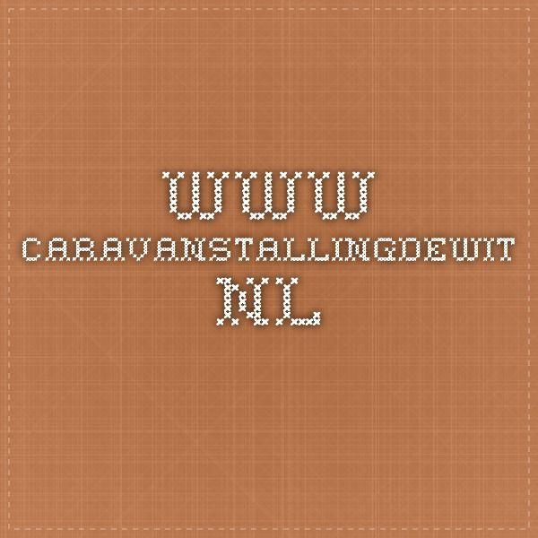 www.caravanstallingdewit.nl