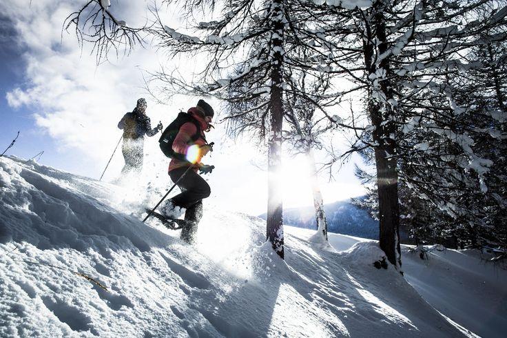 Mit den Schneeschuhen durch die unberührte Natur der Olympiaregion Seefeld wandern. Wir lieben es 💛! *** A walk with snowshoes through the untouched nature of the Olympiaregion Seefeld. We love it 💛!