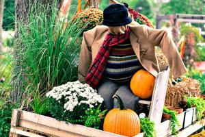 Wherever home may be, you can celebrate fall and the change of season by decorating your porch, entryway, balcony and other outdoor living spaces.