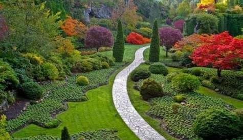 Mevsimlere Göre Bahçe Bakımı