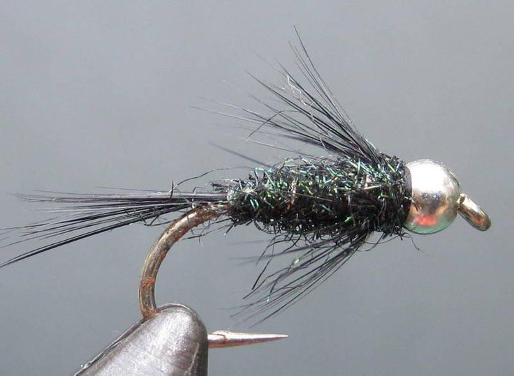 The 935 best images about nymph patterns on pinterest for Fly fishing nymphs