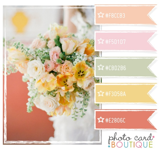 Color Crush Palette � 5.15.2012  from Photo Card Boutique Blog - Tutorials, Business Tips for Photographers by Angie - Brought to you by http://BootcampMedia.co.uk