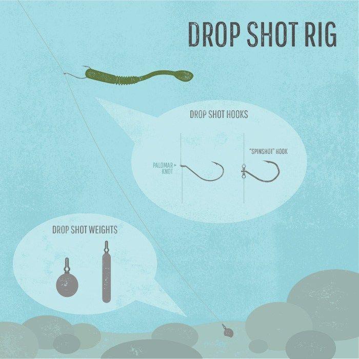 how to drop shot bass fishing