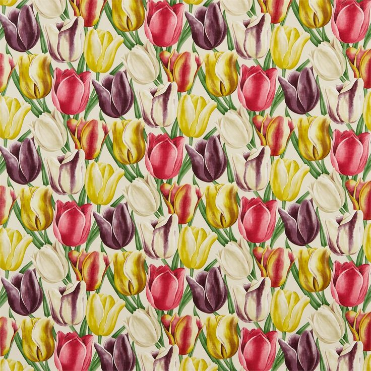Sanderson - Traditional to contemporary, high quality designer fabrics and wallpapers | Products | British/UK Fabric and Wallpapers | Early Tulips (DVIPEA203) | Vintage Fabrics
