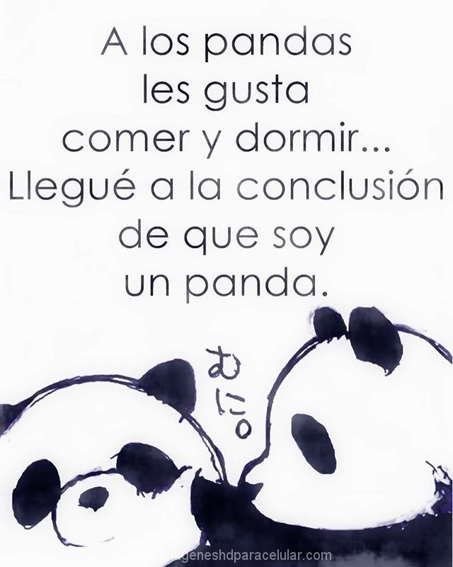 Ms de 25 ideas increbles sobre Imagenes de pandas tiernos en