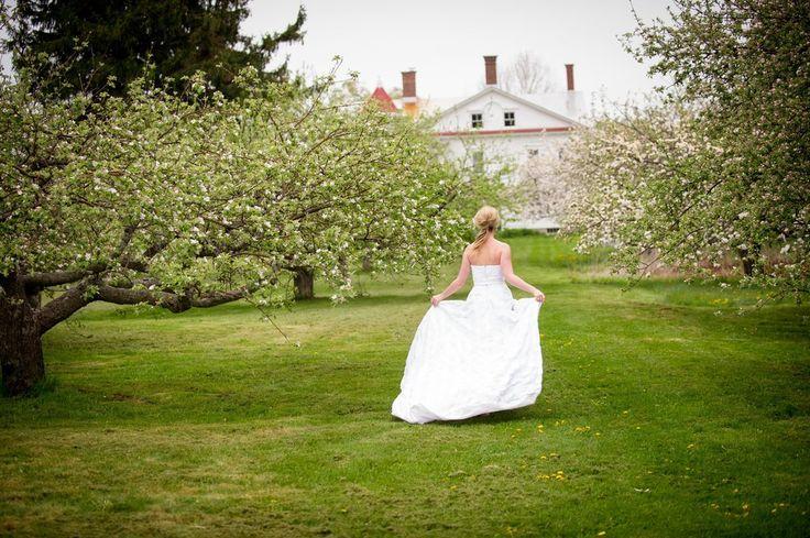 Hancock Shaker Village #berkshirewed #taraconsolatievents #weddingvenue