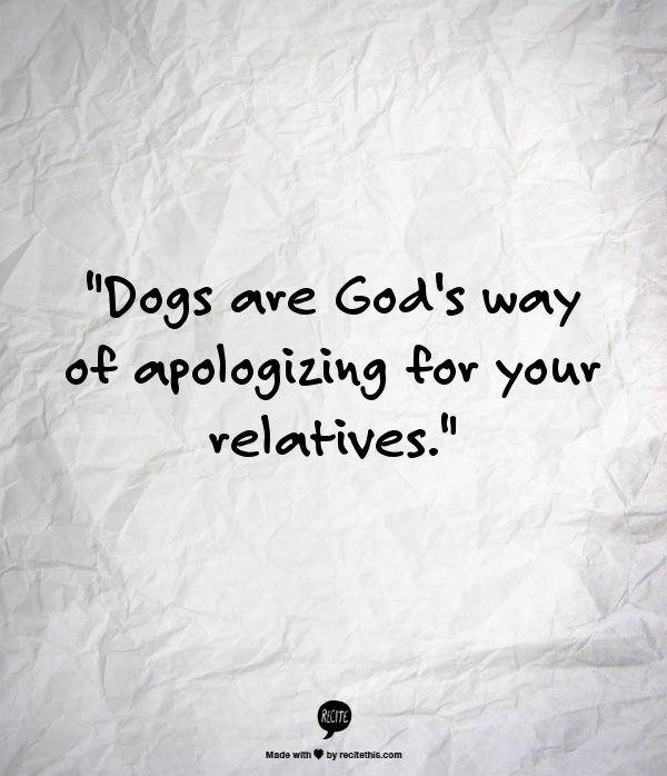 Dogs are Gods way of apologizing for your relatives.