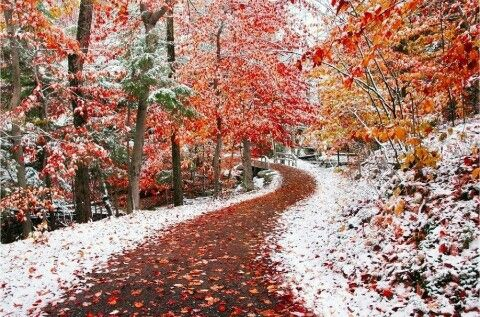 Amikor az ősz és a tél találkozik...a legszebb