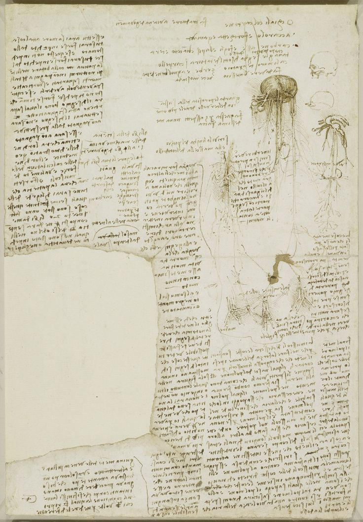 Miscellaneous notes and anatomical sketches Leonardo da Vinci (Vinci 1452-Amboise 1519) #TuscanyAgriturismoGiratola