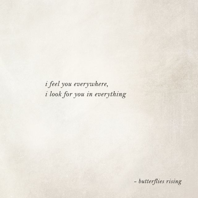 I Feel You Everywhere I Look For You In Everything Butterflies Rising Words Quotes Grief Quotes Mood Quotes