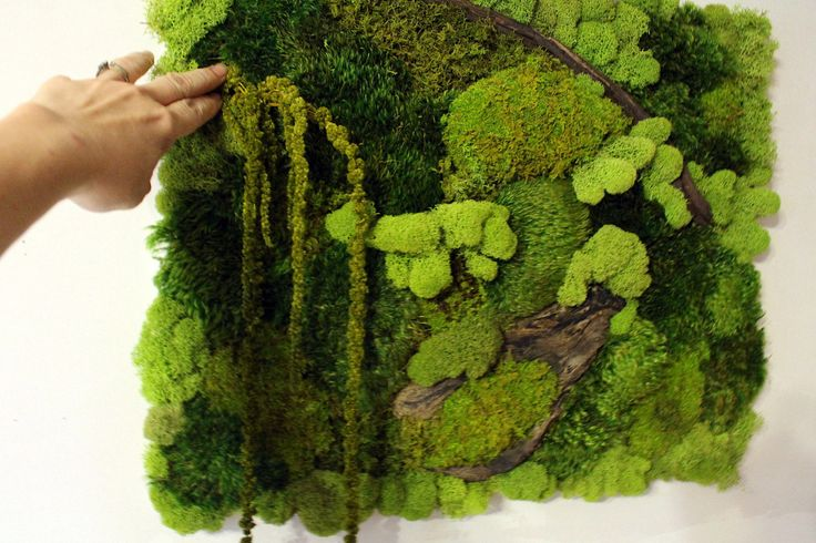 Real Moss Wall Art-16x20 moss frame-Moss Wall hanger-NO WATER needed-Mood & Pillow moss-Recycled wood-Hang vertical or horizontal-OOAK by teresab123 on Etsy