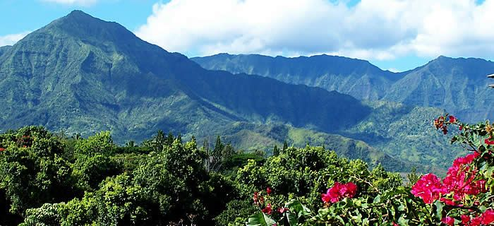 Princeville Vacation Rentals | Luxury Kauai Vacation Rentals : Jean and Abbott Properties