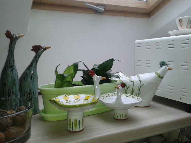 i jeszcze ptaki