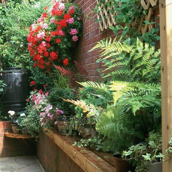 Thin Garden Design: Narrow Passageway Every Corner Of This Garden Has Been