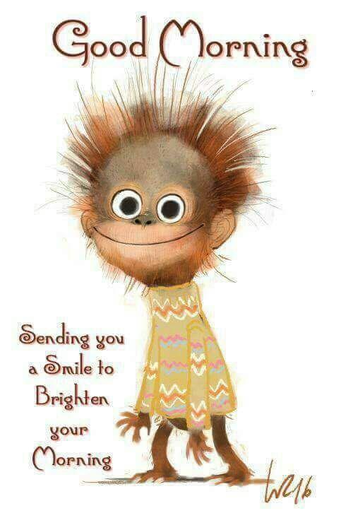 Good Morning, Sending You A Smile To Brighten Your Morning