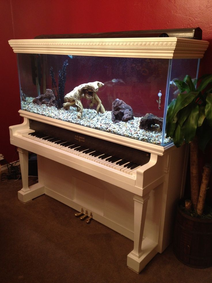 Aquarium built into a white piano.  Make it black add some more fish take away the weird wood and you might have something there