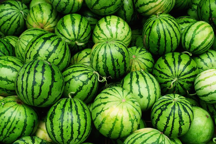 8 Amazing Health Benefits of Watermelon | Live Love Fruit