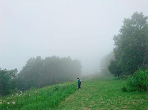 昨日はそのまま小布施のゲストハウスKokoroさんに泊まり、今日は #峰の原高原 に行って来ました。山野草が綺麗でした。  峰の原でも何か楽しいことが始まる予感。  そして明日はTSUTAYA北松本店でのプラバンワークショップ。  明日もたくさんの方々とお会いできるのを楽しみにしております🌸  🌵今後のワークショップの予定🌵  🌸8/19(土) ツタヤ北松本店 さん主催(8/15午後時点)  1回目 10時00分~10時45分 満席  2回目 10時55分~11時40分 残り1席  3回目...