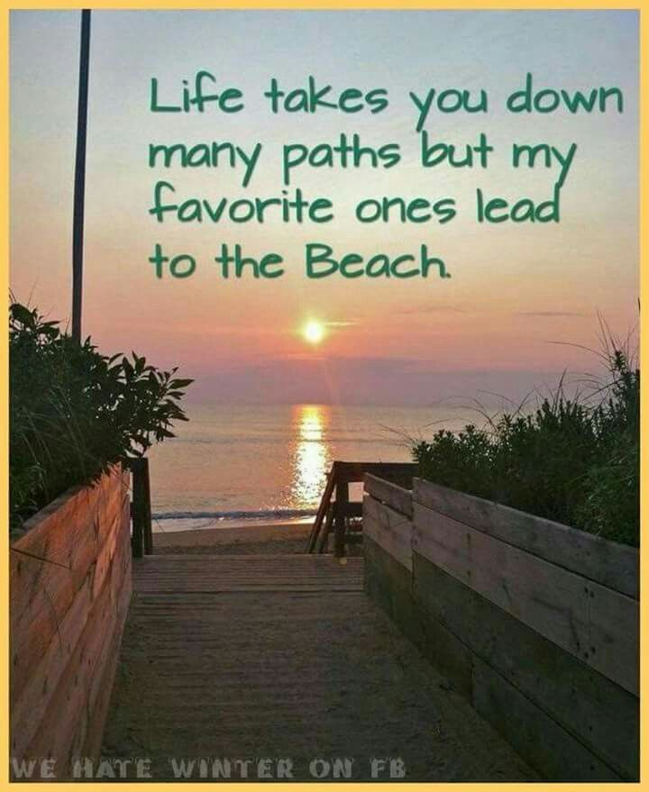 Get A Cruise 🚢🚢🚢 For Half Price Or Even For Free!🌎🌎🌎 Life Takes You  Down Many Paths But My Favorite Ones Lead To The Beach.