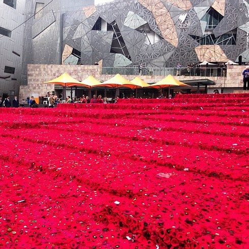 """""""At the time the project started the target of 5,000 seemed like a big feat to conquer."""" – 5000 Poppies blog. 