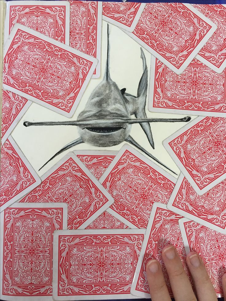 sharcoal shark drawing