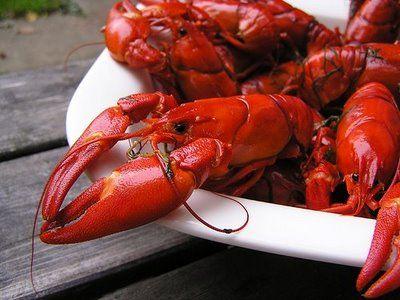 Kräftskiva - Crayfish party - rapujuhlat