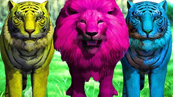 사자 호랑이와 알파벳 학습 | 아이들을위한 동물 동요 | 어린이 컬렉션