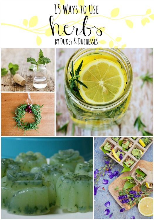 15 Ways to Use Herbs - Dukes and Duchesses