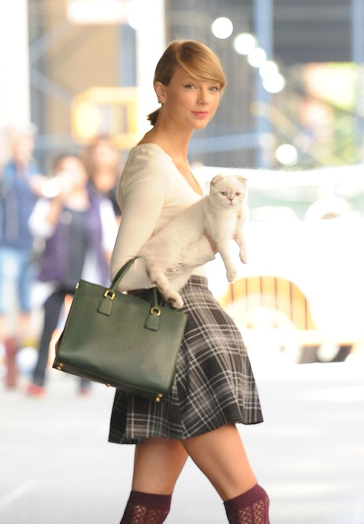 Taylor Swift's Cat Olivia Benson's Met the Real Olivia Benson and It Was Magical  - Seventeen.com