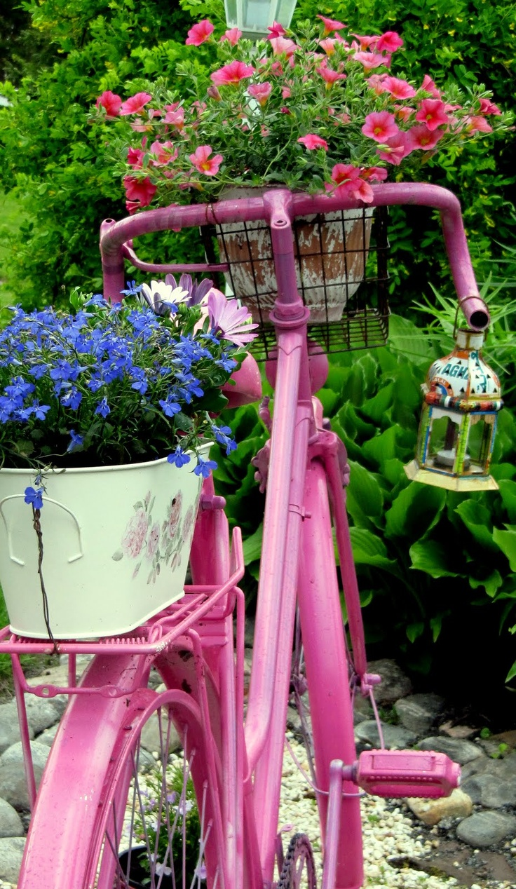 My own view on the pink bike.