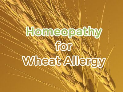 If suffering from wheat allergy, consider homeopathy as a way of treating symptoms that range from swelling and itching to nausea and digestive disturbances
