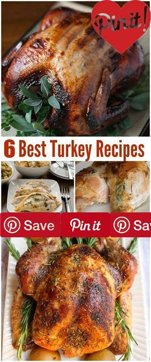 6 Best Turkey Recipes 6 best turkey recipes - perfect for Thanksgiving Christmas or holiday entertaining. Delicious family recipes for dinner or lunch. #Important