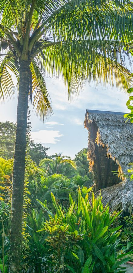 Die schönsten Dschungelhütten in Costa Rica