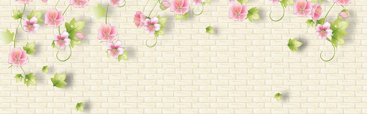 Banner background,Full screen banner background,flowers,Pink,Walls,Women,romantic,Poster banner,dream,gray