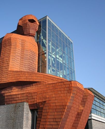CORPUS is niet zomaar een museum over het menselijk lichaam. Het ís het menselijk lichaam, gevestigd in een opvallend gebouw in de vorm van een zittende mens van 35 meter hoog, pal naast de A44 bij Leiden.