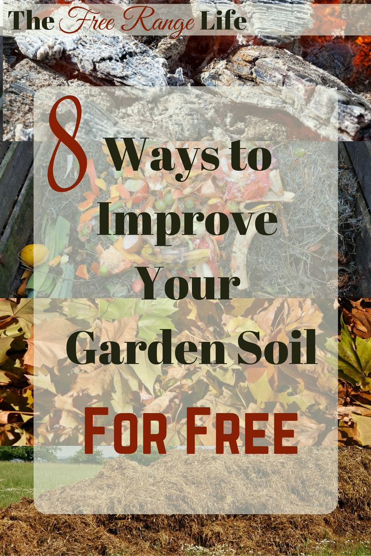 Gardening doesn't have to be expensive! 8 Ways to Improve Your Garden Soil- for FREE!!