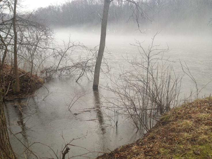 A little stream by my house trickling into a larger, very misty river is what you'll see here. I took this today.
