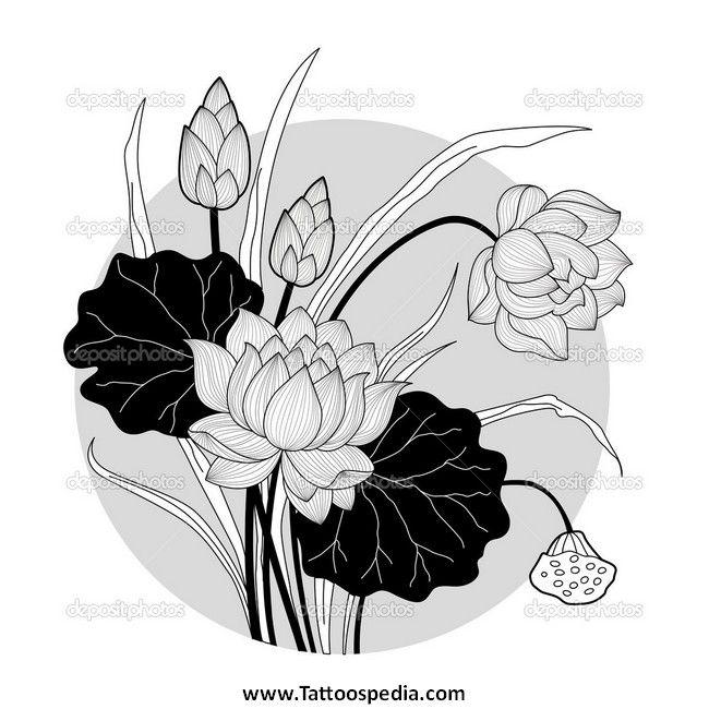 китайские цветы лотоса картина: 24 тыс изображений найдено в Яндекс.Картинках