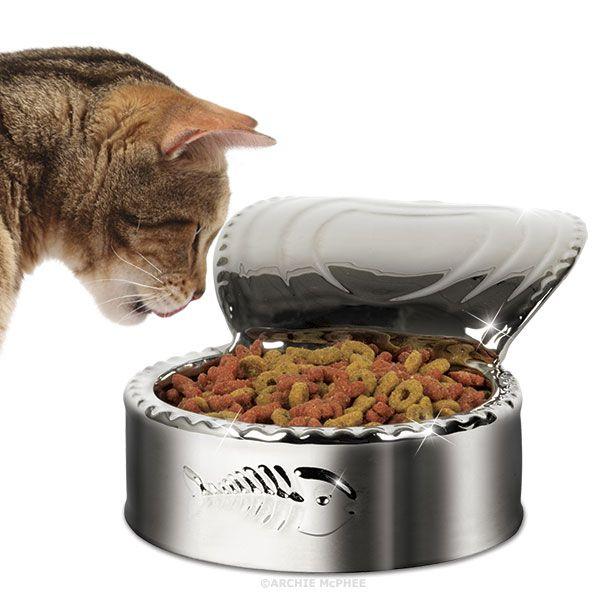 Cat-and-Dish.jpg (600×600)
