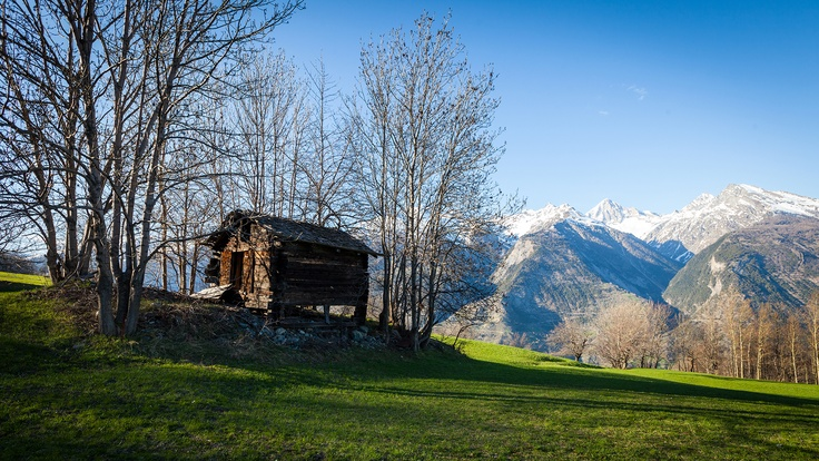 Spring in Valais, picture taken in Eischoll (VS)