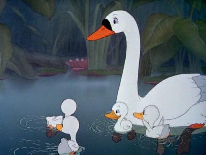 the ugly duckling disney swan wwwpixsharkcom images