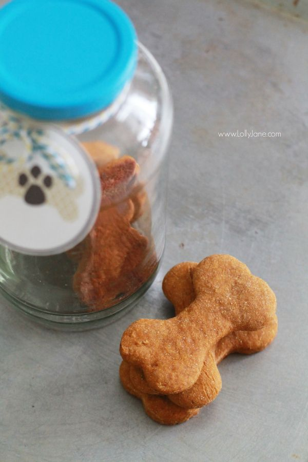 Easy homemade pumpkin dog treats recipe, great gift for your fur baby! Includes free printable pet gift tags!