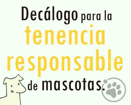 Decálogo para la tenencia responsable de mascotas https://www.facebook.com/notes/orbita-pets/amigos-orbita-petsdec%C3%A1logo-tenencia-responsable-de-mascota/548131851997108