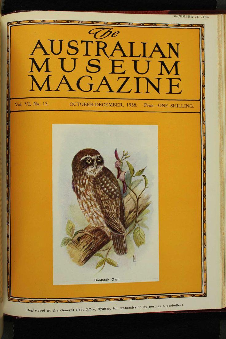 Australian-Museum-Magazine. The Boobook Owl. Illustrator: Lilian Medland. http://australianmuseum.net.au/Australian-Museum-Magazine-1921-1942/