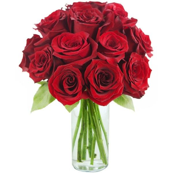 red rose of passion bouquet one dozen long stemmed with vase 61 - Red Home Decor Accessories