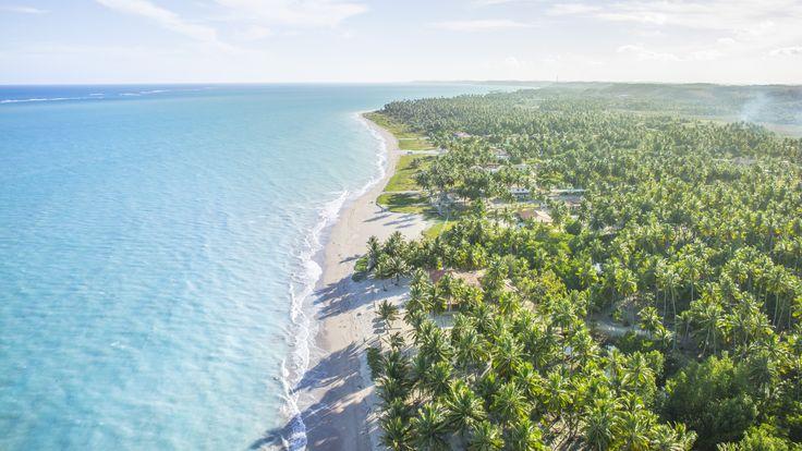 A tarde na praia de Xaréu, também conhecida como praia da Bruna  #PraiaDeXaréu #PraiaDaBruna #Maragogi #Alagoas #Nordeste #Praias #Férias