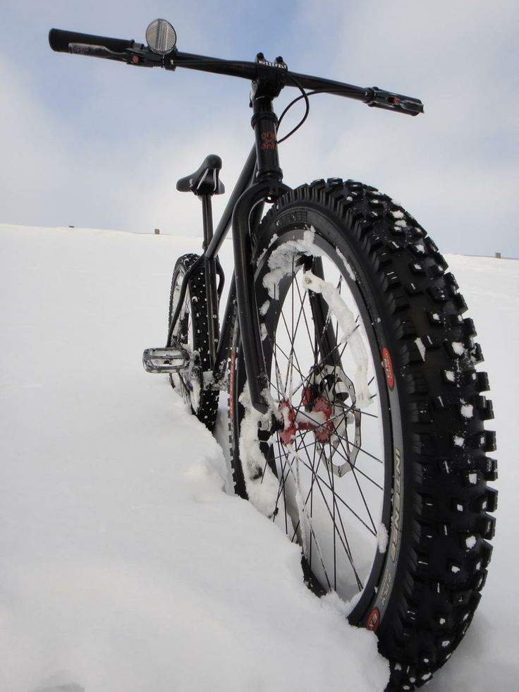 Surly 1x1 + Large Marge Rims + DH Intense 24x3.00