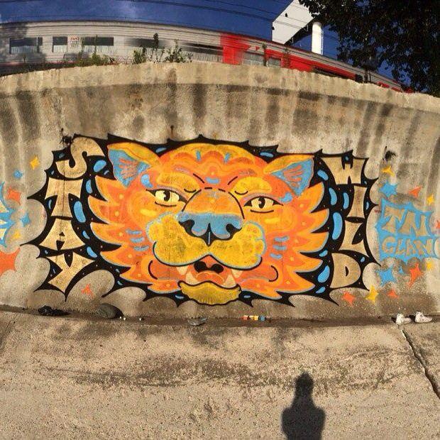 staywild sochi sunny lion