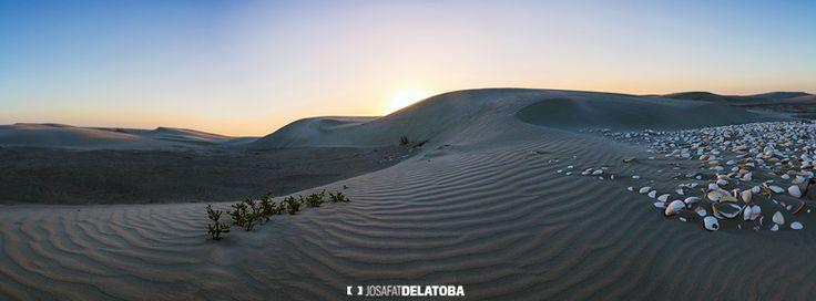 Sand dunes in La Baja #josafatdelatoba #cabophotographer #loscabos #bajacaliforniasur #mexico #sand #dunes #desert