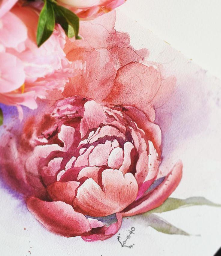 """Coral peonies from Aix flowers market ❤️ #aixanprovenceflowersmarket #allaboutwatercolorflowers_jb #watercolorprovence_jb  Большинство цветов и оттенков, которыми я вдохновляюсь в реальности, проходят через какой- то """"внутренний фотошоп"""", все становится чуть ярче, чуть чище, чуть более фиолетовым:)) А бывают сложные, неуловимые цвета, когда нужно поломать голову для получения схожего с реальностью эффекта. Мешаешь краски, как будто разгадываешь загадку. Коралловые пионы оказались одной из…"""